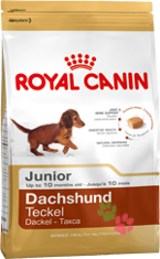 Royal Canin Dachshund Junior (Такса Юниор)