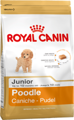 Royal Canin Poodle Junior (Пудель Юниор)