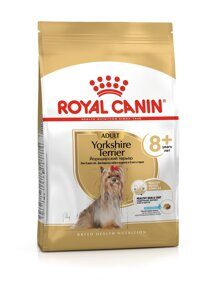 yorkshire_terrier_8_packshot-russie-bhn20-preview_1jpg_336509.jpg