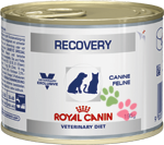 Royal Canin Recovery (Рекавери)