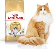 Royal Canin Norwegian Adult