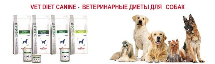 royal-canin.jpg